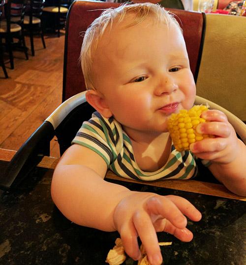 Oscar with corn